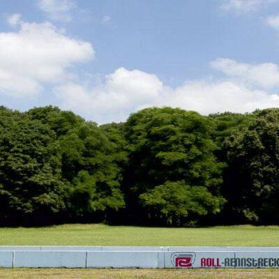 Roll-Rennstrecke® Panorama Wald