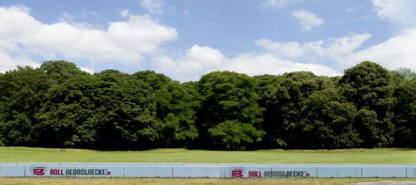 Roll Rennstrecke Panorama Wald | Mitte | DRIFT Deko